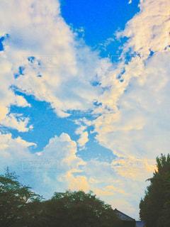 空には雲のグループの写真・画像素材[1781382]
