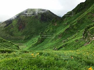 近くに緑豊かな緑の丘陵のアップの写真・画像素材[1743135]