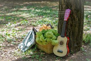 ピクニックを楽しみましょうの写真・画像素材[2363973]