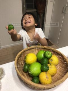 柑橘の写真・画像素材[1768300]