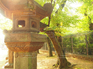 上野公園の中の写真・画像素材[1747703]