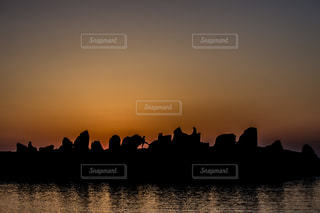 夕日とシルエット - No.725013