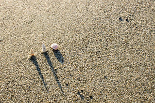 砂の中に立っている小さな男の子の写真・画像素材[813765]