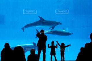水の前に立っている人々 のグループの写真・画像素材[814175]