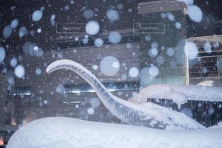 雪に覆われた鉄道の写真・画像素材[985551]