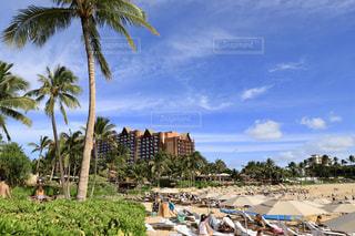 ハワイのコオリナビーチの写真・画像素材[1780716]