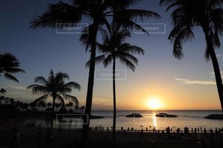 ハワイのサンセットの写真・画像素材[1786011]