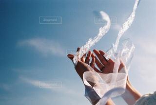 光と、風の交差の写真・画像素材[2117192]