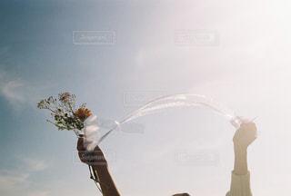 両手にの写真・画像素材[2117194]
