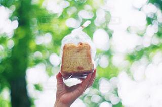 パンの写真・画像素材[2293321]
