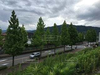 No.79171 風景