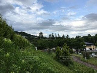 風景 - No.79184