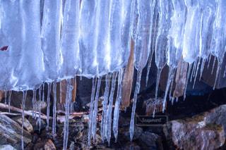 氷柱のカーテンの写真・画像素材[1754318]