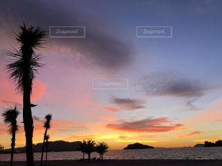 海に沈む夕陽と椰子の木の写真・画像素材[1755705]