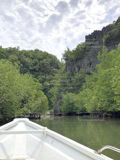 ボートから見たマングローブジャングルの写真・画像素材[1758024]