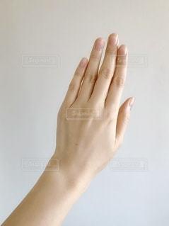 手の甲のアップの写真・画像素材[1834113]