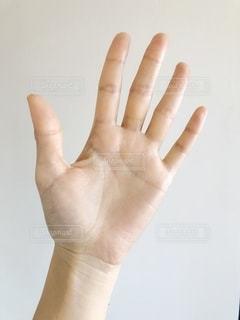 手のひらアップの写真・画像素材[1834114]