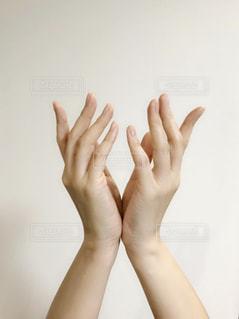 女性の手の写真・画像素材[1834341]