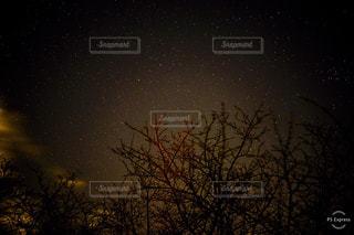 夜に見上げる空の景色の写真・画像素材[1763920]