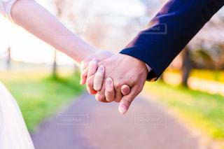 手を握るの写真・画像素材[2329529]
