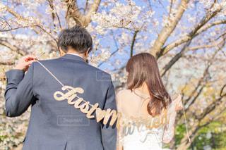 結婚の写真・画像素材[2357526]