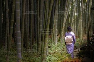 木の隣に立っている人の写真・画像素材[2455648]