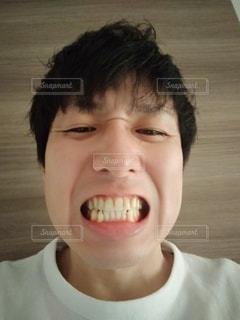 歯の写真・画像素材[2463227]