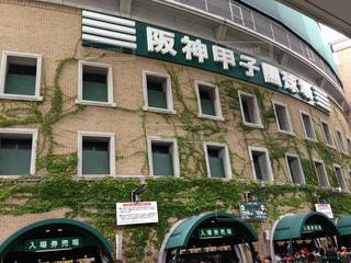 阪神甲子園球場の写真・画像素材[1768572]