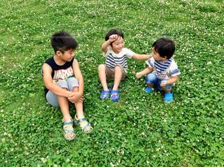 草の中に立っている小さな男の子の写真・画像素材[1763731]