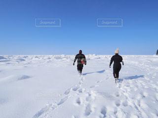 流氷探索の写真・画像素材[1762018]