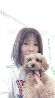 ピンクのシャツを着た犬の写真・画像素材[2919119]