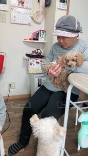 犬と一緒にテーブルに座っている人の写真・画像素材[2999734]