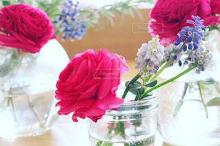 花瓶の花の写真・画像素材[1767504]