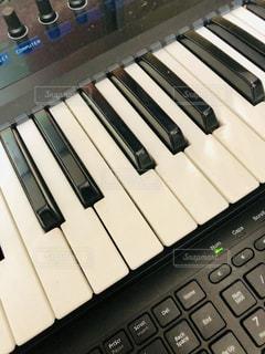 鍵盤の写真・画像素材[1807944]