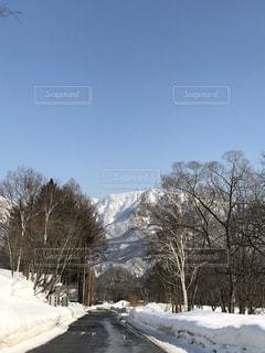 雪に覆われた山の写真・画像素材[1773428]