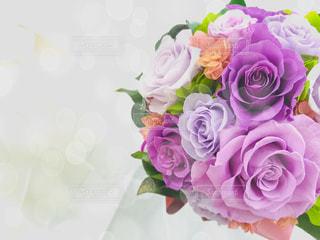 紫のブーケ 花束のアップの写真・画像素材[1768634]