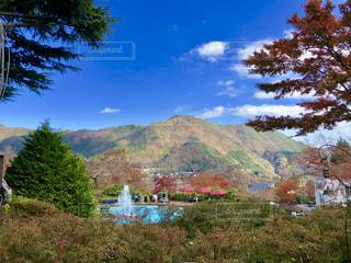 箱根強羅公園の写真・画像素材[1767588]