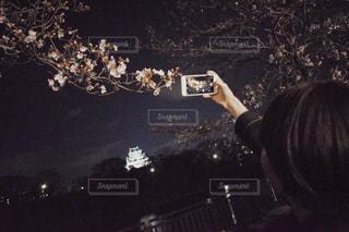 桜の写真・画像素材[1997504]