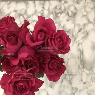薔薇と大理石の写真・画像素材[1769545]