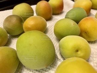 梅の写真・画像素材[3356472]