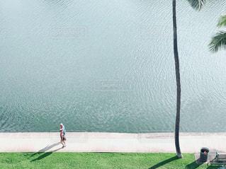 ワイキキ運河ジョギングの写真・画像素材[1133539]