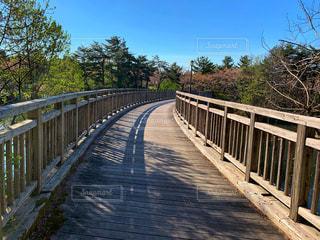 公園の橋の写真・画像素材[2094732]