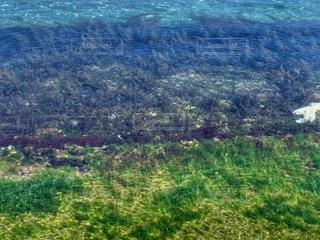 海の写真・画像素材[2109737]
