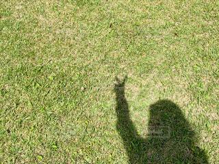 女性の人影の写真・画像素材[2251098]