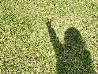 女性の人影の写真・画像素材[2251103]