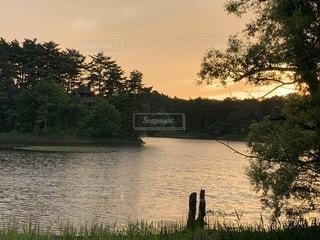 夕暮れの公園の写真・画像素材[2287512]