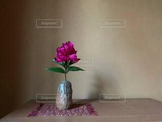 シャクヤクを生けている花瓶の写真・画像素材[4557673]