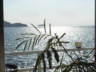 海を眺めるの写真・画像素材[1773811]