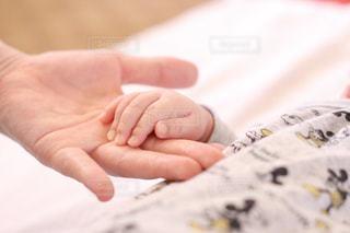 赤ちゃんの写真・画像素材[1773788]