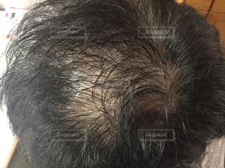父親の頭頂部パシャリの写真・画像素材[1813974]